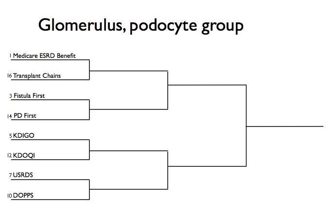 Brackets Glomerulus Podocyte