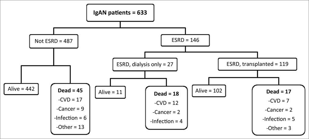 Knoop et al AJKD Fig 1