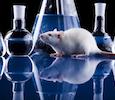 bmr-biomedical-research-region-small